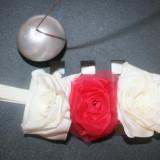 Bentita cordeluta elastica