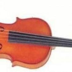 Vand vioara 4/4 fabricatie Reghin anii 60-70
