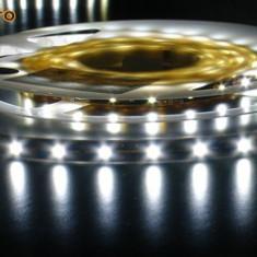 Bec / LED - Banda Led / bagheta cu 60 leduri/m - doar 90 lei/rola
