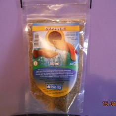 Hrana pesti (pureci uscati) - Mancare pesti