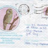 D-416 Intreg Postal Cucuveaua Pitica - Timbre Romania