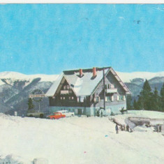 SINAIA - Cabana Bradet, cota 1300 - Carte Postala Muntenia dupa 1918