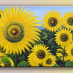 Tablou ulei pe panza - Floarea soarelui (90x60cm) IEFTIN SI FRUMOS - Reproducere