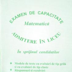 Raducan, G. s. a. - IN SPRIJINUL CANDIDATILOR - EXAMEN DE CAPACITATE MATEMATICA. ADMITERE IN LICEU - Carte Teste Nationale Altele