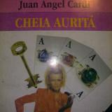 Juan Angel Cardi - Cheia aurita