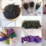 LAVANDA - saculet, perna, decoruri, plante