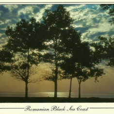 Carti Postale Romania dupa 1918, Circulata, Fotografie - NGL: Romanian Black Sea Coast Vraja Marii Anii 90 Carte Postala Color Circulata Carti Postale Vechi CP