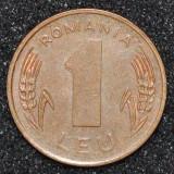 1656 ROMANIA 1 LEU 1993 - Moneda Romania