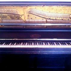 Pianina Altele Schoneck Germania