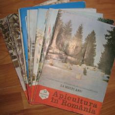 Revista APICULTURA IN ROMANIA, colectie completa pe anul 1978 (stuparit, albinelor, stuparului, albinarit) 10 lei/revista