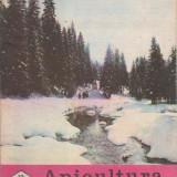 revista APICULTURA IN ROMANIA nr.12,dec.1988