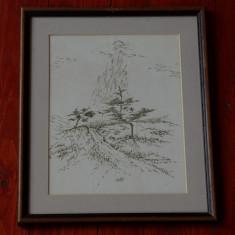 Tablou cu rama frumoasa - desen in tus cu penita - peisaj Japonez - semnat !!! - Pictor strain, Peisaje