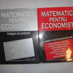 Carte afaceri - Matematici pentru Economisti - manual ASE 2 vol, manual + culegere probleme, P11