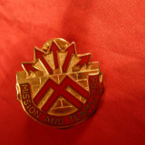 Insigna Militara Americana Mission and Team Work, 2, 9 x 2, 9 cm