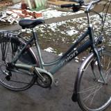 Bicicleta Dama Nespecificat union