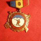Insigna - Concursul de Ski al Armatelor Prietene 1963