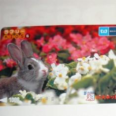 Cartela / Card Japonia - NATURA, ANIMALE - IEPURE -   2+1 gratis toate licitatiile - RBK2395