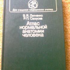 Atlas anatomia omului umana limba rusa ilustrata color anatomie 320 pagini