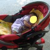 Carucior copii 2 in 1 Baby Care, Altele, Pliabil, Multicolor, Maner reversibil - Carucior copii Baby Care 2 in 1