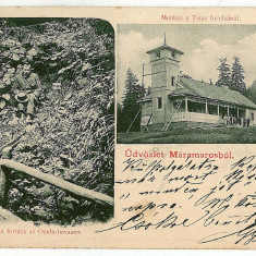661 - L i t h o, Maramures, TISA - old postcard - used - 1903 - Carte Postala Maramures pana la 1904, Circulata, Printata
