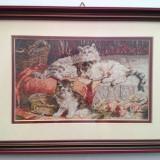Goblen Pisicile - Tapiterie Goblen