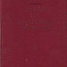 Sinelnikov-Atlas de anatomie umana in spaniola-vol 2