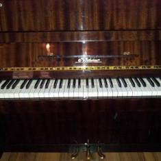 Pianina Altele Nocturno