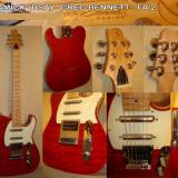 Chitara electrica - Chitara - Samick - Greg Bennett - Fa 2 Us Edition