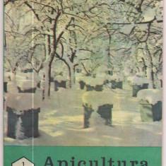 Revista/Ziar - 5A(000) revista-APICULTURA IN ROMANIA ianuarie 1989