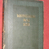 Istorie - Mirela Teodorescu, Ion Ghetie - Manuscrisul de la Ieud