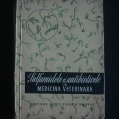 I. ADAMESTEANU - SULFAMIDELE SI ANTIBIOTICELE IN MEDICINA VETERINARA {1956} - Carte Medicina veterinara