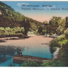 Sighetu Marmatiei, Maramures, Gradina Morii, necirculata, 1917 - Carte Postala Maramures 1904-1918