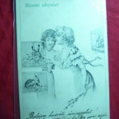 Ilustrata- Felicitare, circ. 1903 de la Deva la Arad - Femei si iepuri - Carte Postala Transilvania pana la 1904
