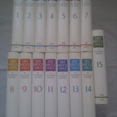 DER BROCKHAUS IN FUNFZEHN BANDEN-ENCICLOPEDIE IN 15 VOLUME 8000PAG, LIMBA GERMANA - Carte de lux