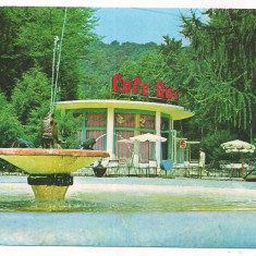 Carte postala tematica, Circulata, Printata - % carte postala (ilustrata)-ARAD-Baile Moneasa- Cafe Bar