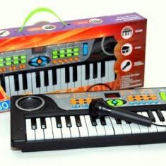 Instrumente muzicale copii - Mini orga de jucarie cu microfon functional pentru copii