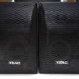 Monitoare TEAC LS-X8MK2, 41-80W, Boxe podea