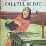 Carte de povesti - CALUTUL DE FOC - L. Diakonov