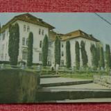 carte postala - Olanesti - Vila florilor - necirculata !!!