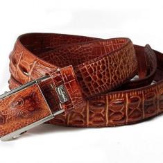 Curea piele naturala pafta crocodil M3 (3culori) curele barbati catarama +CADOU! - Curea Barbati, curea si catarama