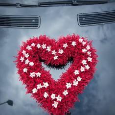 Aranjamente pentru masina - Decoratiuni nunta