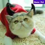 Costumas pt. pisica / catel haina pisici catei caini costum caine catelus +CADOU