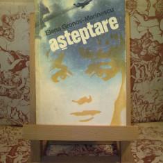 Roman - Elena Gronov-Marinescu - Asteptare