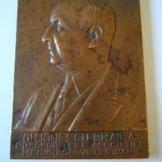 RARA!PLACHETA BRONZ GH.IONESCU BRAILA PRES.ASOC.MEDICILOR VETERINARI ROMANI 1939 - Medalii Romania