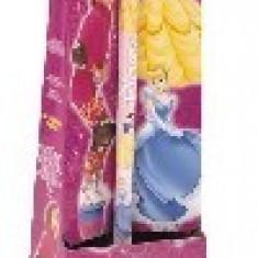 Minge Fitness - T-ball Disney Princess Mondo