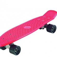 Skateboard Plastic Roz