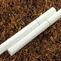 PACHET 162 g TUTUN+TUBURI PRIMUS