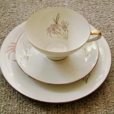 Set / Serviciu - mic dejun - portelan Bavaria - Seltmann Weiden - 1955, Decorative