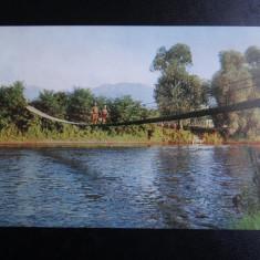 SEPT15-Vedere/Carte postala-RPR-Avrig-Pod suspendat peste Olt-necirculata - Carte Postala Banat dupa 1918, Printata