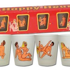 Jucarii erotice - Set Pahare Sexy cu Pozitii Sexuale